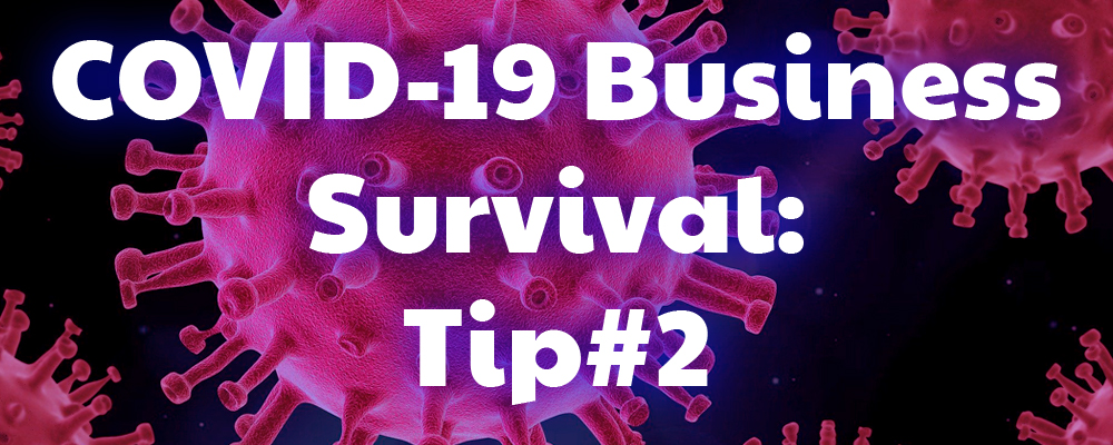 COVID-19 Business Survival – Tip #2 (Adapt Your Business)